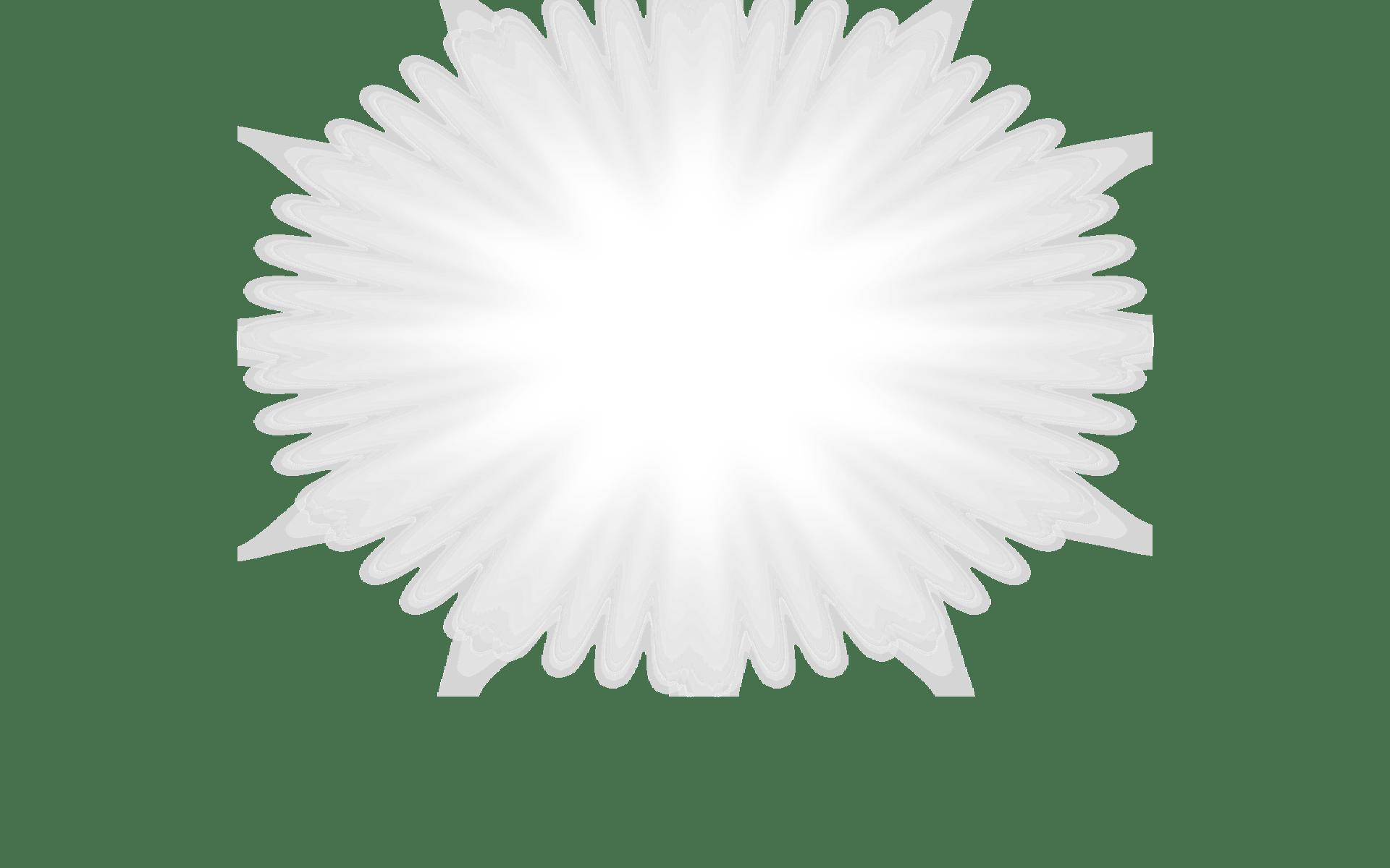 Amateur white facial light as a feather 4